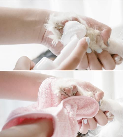 arrr 寵物乾洗澡泡泡